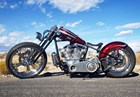 Used 2007 Special Construction Bobber