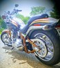 Photo of a 2008 Harley-Davidson® FXSTSSE2-ANV Screamin' Eagle® Softail® Springer® Anniversary