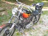 Photo of a 1976 Harley-Davidson® XL Sportster® 1000
