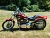 Photo of a 2008 Harley-Davidson® FXSTC-ANV Softail® Custom Anniversary