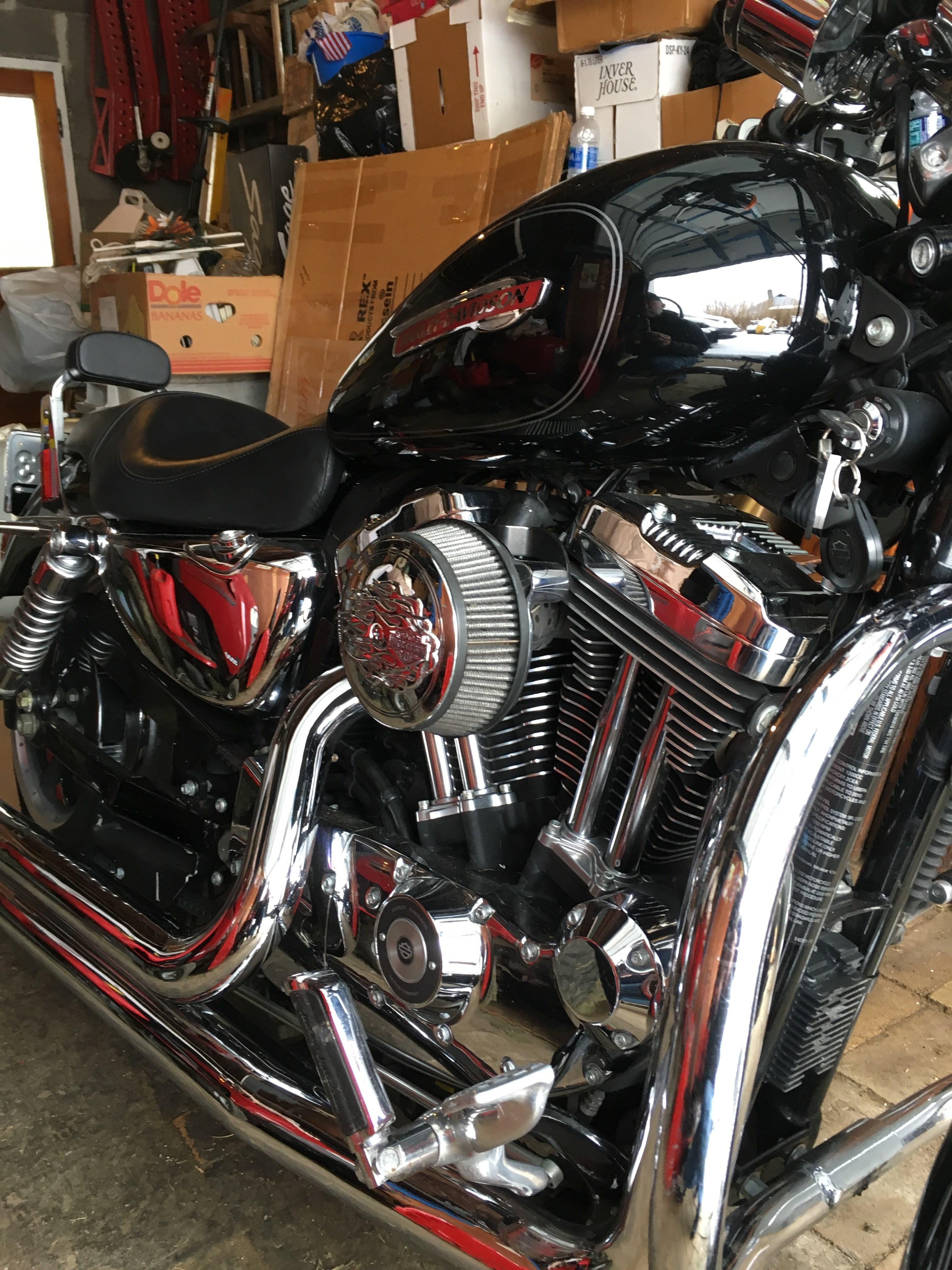 Duluth Harley Davidson >> 2010 Harley-Davidson® XL1200C Sportster® 1200 Custom