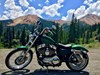 Photo of a 2013 Harley-Davidson® XL1200C Sportster® 1200 Custom