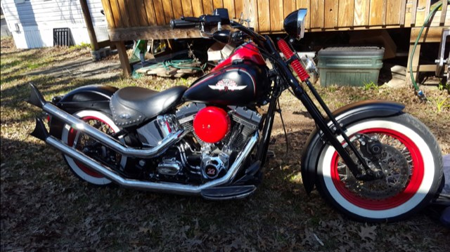 Photo of a 2009 Thunder Mountain  Custom