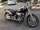 Used 2019 Harley-Davidson® Softail® Low Rider®