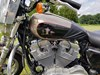 Photo of a 2009 Harley-Davidson® XLH-883 Sportster® 883