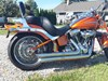Photo of a 2008 Harley-Davidson® FXSTSSE2 Screamin' Eagle® Softail® Springer®