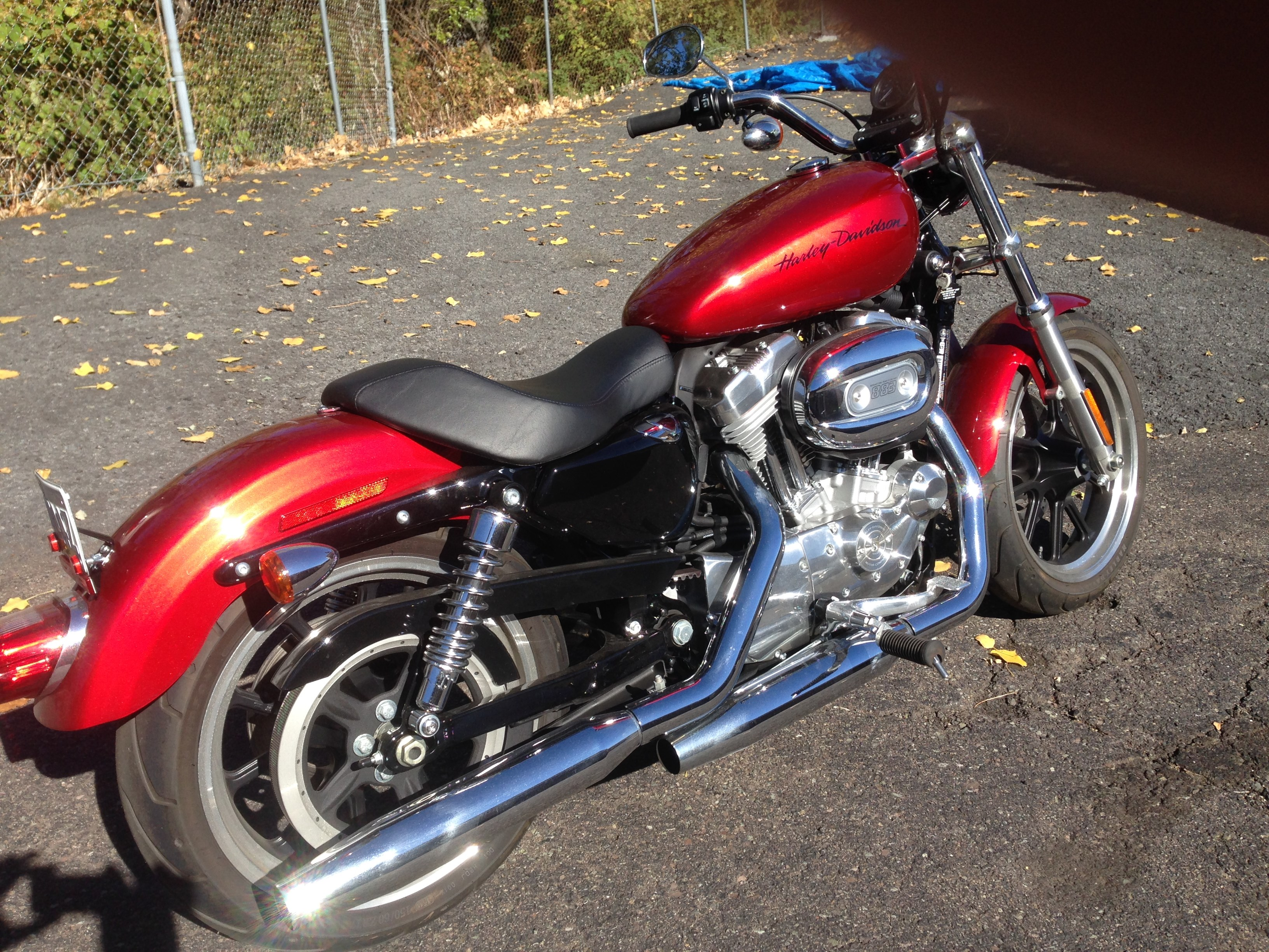 all new used harley davidson sportster 883 1 244 bikes page 1 chopperexchange. Black Bedroom Furniture Sets. Home Design Ideas