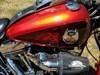 Photo of a 2008 Harley-Davidson® FXSTC-ANV Softail® Custom Anniversary