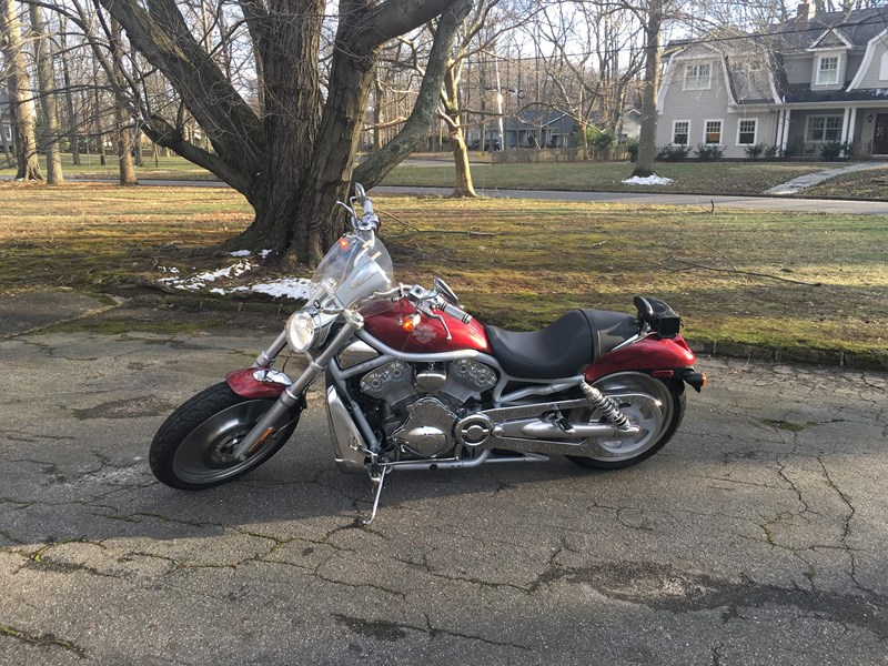 Photo of a 2003 Harley-Davidson® VRSCA V-Rod® Custom