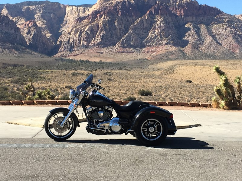 Photo of a 2016 Harley-Davidson® FLRT Freewheeler™