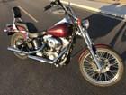 Used 2000 Harley-Davidson® Softail® Standard
