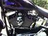 Photo of a 2000 Harley-Davidson® FLSTF Softail® Fat Boy®