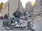 Used 1998 Harley-Davidson® Heritage Springer Anniversary®