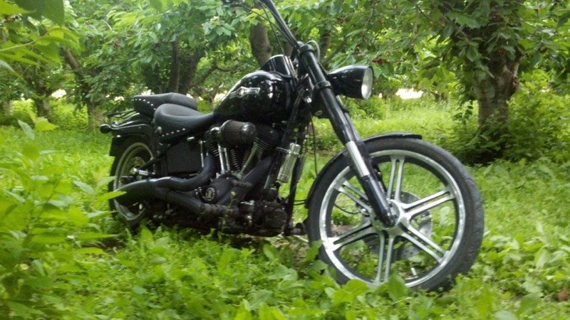 Photo of a 2007 Harley-Davidson®  Custom