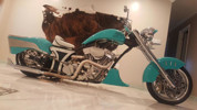 Photo of a 2008 Special Construction  Custom