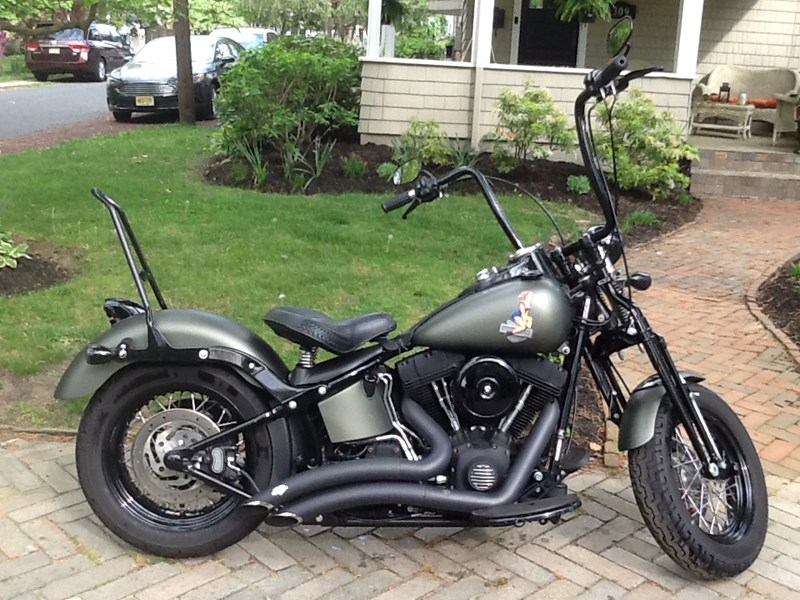 Photo of a 2009 Harley-Davidson® FLSTSB Softail® Cross Bones™