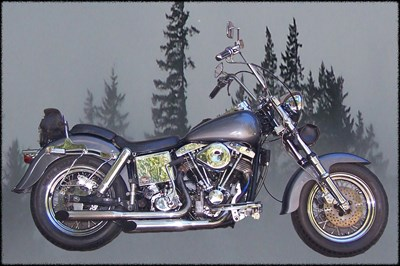 Used 1980 Harley-Davidson® Low Rider® 1340