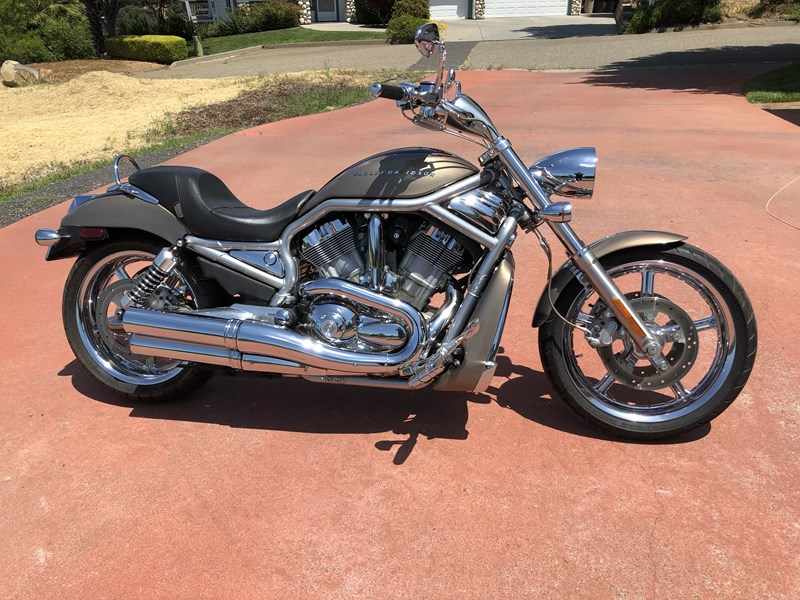 Photo of a 2004 Harley-Davidson® VRSCA V-Rod® - Silver/Gray Frame