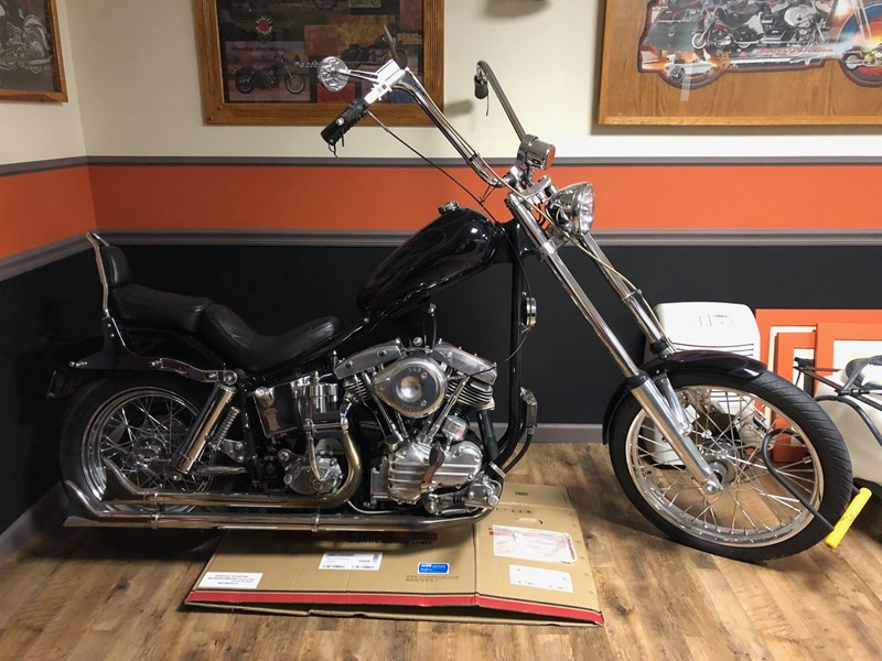 Photo of a 1994 Special Construction  Chopper