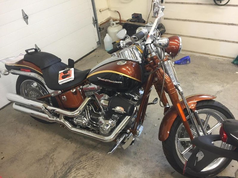 Photo of a 2008 Harley-Davidson® FXSTSSE2-ANV Screamin' Eagle® Softail® Springer® Anniversary