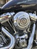 Photo of a 2007 Harley-Davidson® FXSTSSE Screamin' Eagle® Softail® Springer®