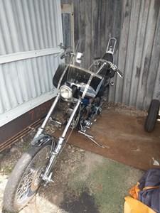 Used 1989 Harley-Davidson® Springer® Softail®