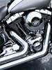 Photo of a 2009 Harley-Davidson® FLSTN Softail® Deluxe