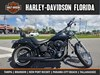 Photo of a 2007 Harley-Davidson® FXSTB Softail® Night Train®