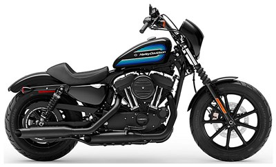 Used 2019 Harley-Davidson® Iron 1200™