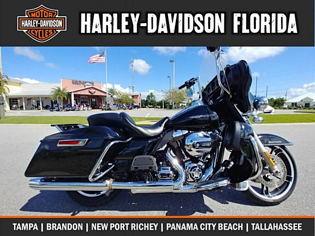 Photo of a 2015 Harley-Davidson® FLHTP Electra Glide® Police