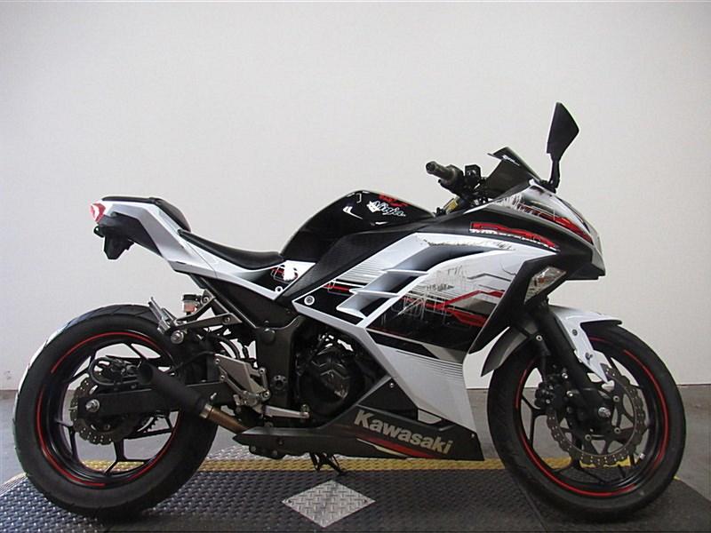 Photo of a 2014 Kawasaki  Ninja™ 300