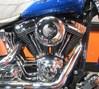 Photo of a 2002 Harley-Davidson® FXSTS Springer® Softail®