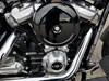 Photo of a 2018 Harley-Davidson® FLSL Softail® Slim®