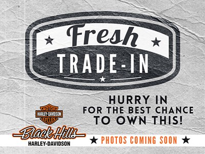 Used 1996 Harley-Davidson® Electra Glide® Ultra Classic® w/ Sidecar