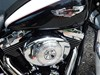 Photo of a 2005 Harley-Davidson® FLSTN/I Softail® Deluxe