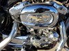 Photo of a 2009 Harley-Davidson® XL1200C Sportster® 1200 Custom