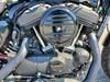 Photo of a 2020 Harley-Davidson® XL1200NS Iron 1200™