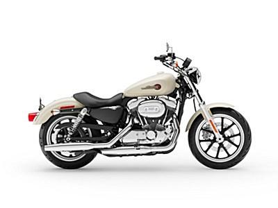 Photo of a 2019 Harley-Davidson® XL883L Sportster® SuperLow®