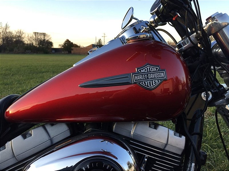 Photo of a 2008 Harley-Davidson® FXDF Dyna® Fat Bob