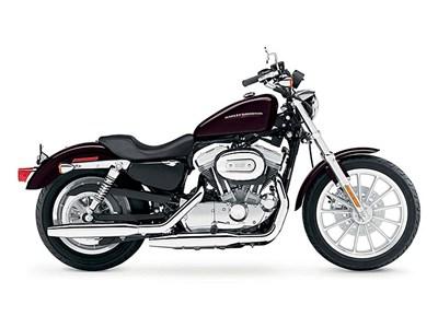 Harley Springer 2013