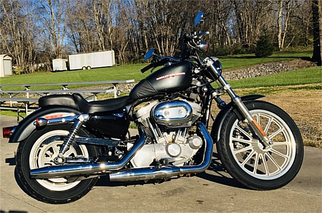 Photo of a 2006 Harley-Davidson® XL883L Sportster® 883 Low