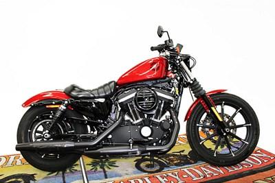 Used 2019 Harley-Davidson® Sportster® Iron 883™