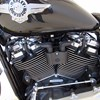Photo of a 2018 Harley-Davidson® FLFBSANV Softail® Fat Boy® 114 115th Anniversary