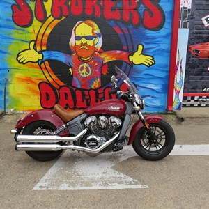 Used 2015 Indian® Motorcycle Scout™