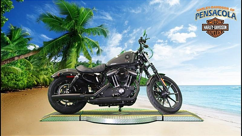 Photo of a 2019 Harley-Davidson® XL883N Sportster® Iron 883™