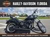 Photo of a 2007 Harley-Davidson® FXSTB Softail® Night Train®