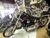 Photo of a 1999 Harley-Davidson® FXSTC Softail® Custom