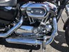 Photo of a 2013 Harley-Davidson® XL1200C Sportster® 1200 Custom