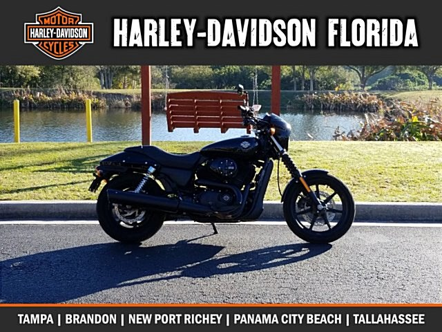 Photo of a 2015 Harley-Davidson® XG500 Street™ 500