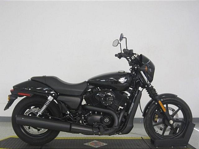 Photo of a 2018 Harley-Davidson® XG500 Street™ 500